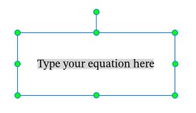 A rectangle with green dots appearing on the Canvas allows you to type your own equations.