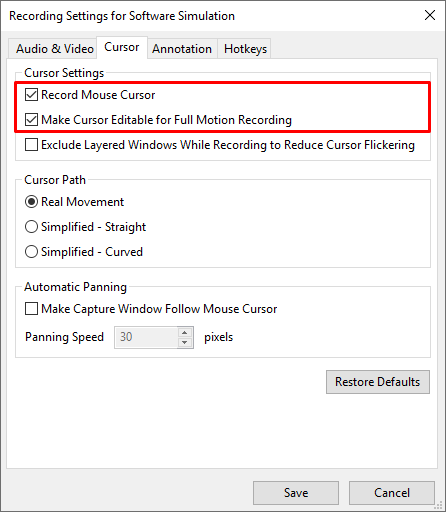 Cursor settings for recording simulation