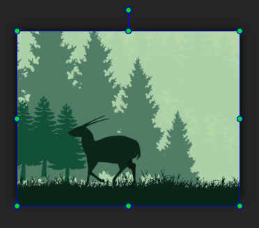 Resize the image element width to be coincided the scene width.