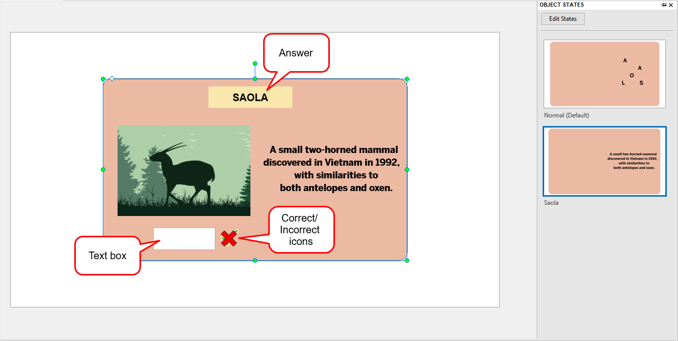 Add answer and icons and text box to the advanced interactive flashcard
