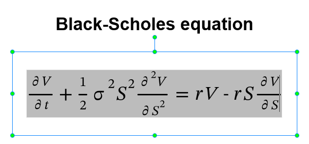 black-scholes equation