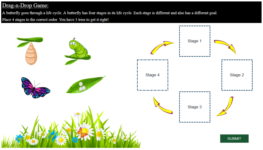 Developing On-screen Activity for Interactive eLearning