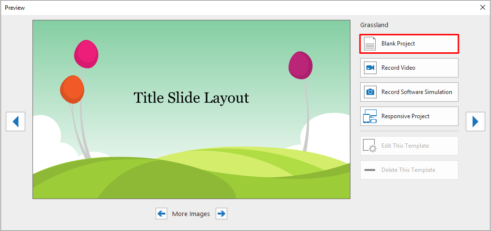 Click any of the themes and select Blank Project from the pop-up dialog.