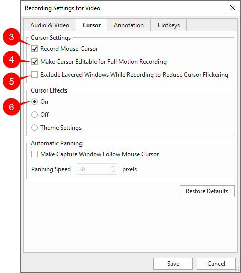 Record Settings for video