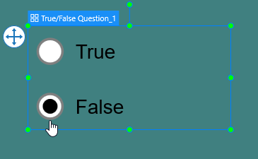 Set Correct Answer for True False Questions