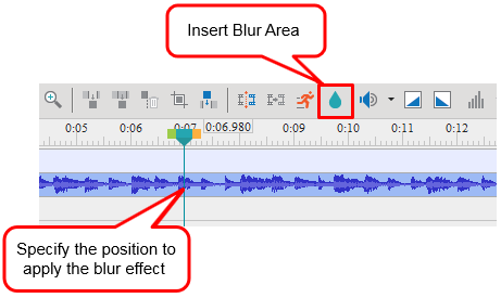 Specify the position to apply the blur effect and click the Insert Blur Area button