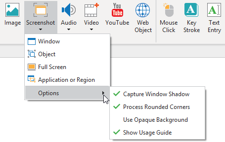 You can capture windows, objects, the full screen (also the desktop), applications, or regions of your screen.