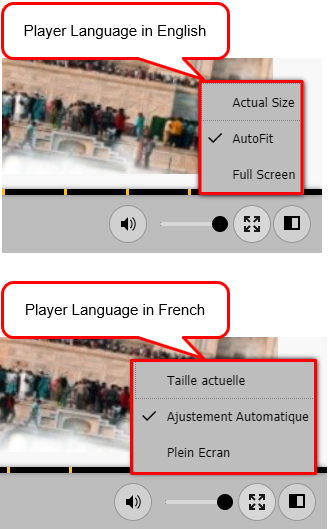Player language in English and French